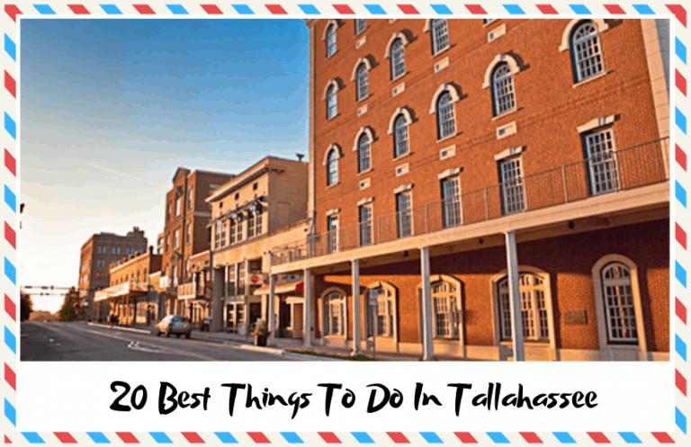 The Best Things To Do In Tallahassee
