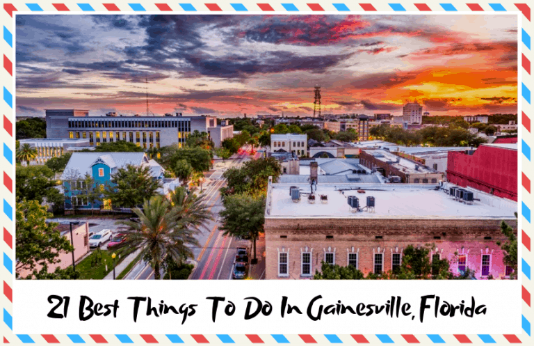 The Best Things to do in Gainesville, Florida