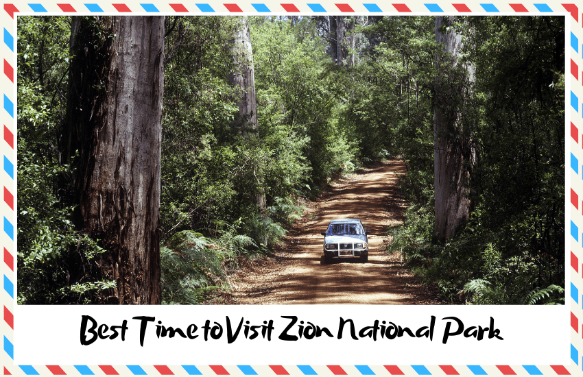 Best Time to Visit Zion National Park to Have the Best Time